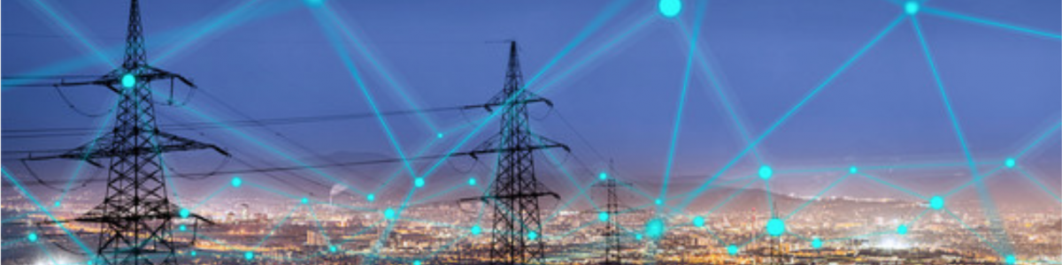 smart meter network managment