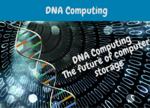 dna computing basics