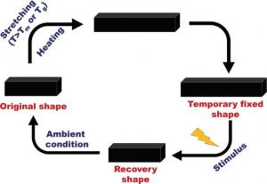 polymer memory basics